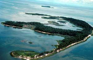 A long slender T shaped island sits amid the shallow blue waters near the coast.