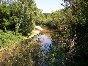 The North Fork River cuts through the dense forested area in the Devils Backbone Wilderness.