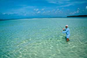 A man dressed in blue, standing knee-deep in the crystal clear water of the flats, fly fishing.