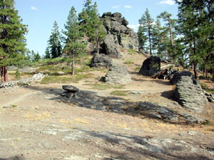 A large gray rock outcropping, rising out of the open forest.