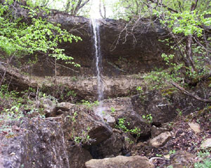 A spring falls over the lip of a bluff, creating a tiny waterfall in the Hercules-Glades Wilderness.