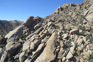 Coarse grained granitic domes dot the landscape of the wilderness.