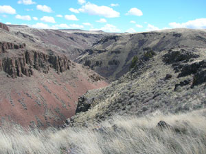 Desert shrubs and grasses cover the slopes of a canyon with scattered rock outcrops along the sides.