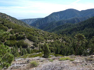 From this overlook, the green expanse of the valley is easy to see.  The trees and brush are all a brilliant green.