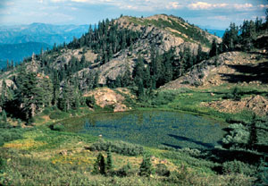 Lily Pad Lake sits nestled atop a mountain in the Red Buttes Wilderness. The lake looks glassy except for the lily pads floating on the surface.