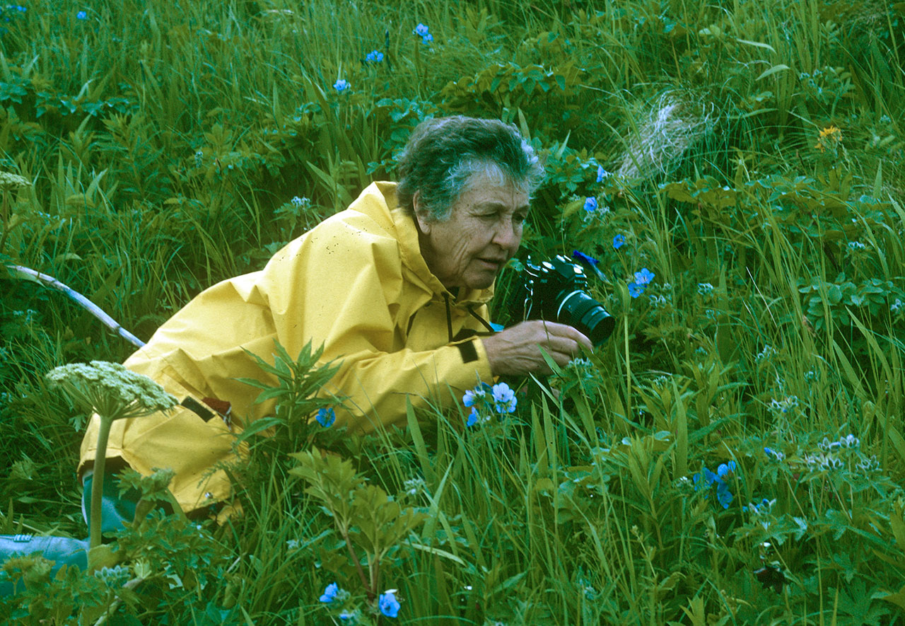 Older woman photographing plants