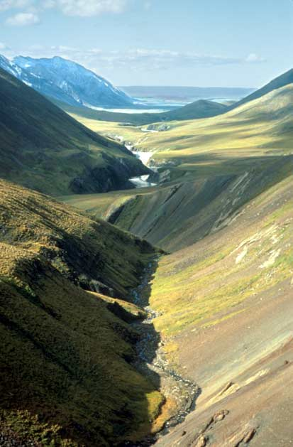 Looking down a massive alpine valley, covered in low green tundra and exposed brown rock.