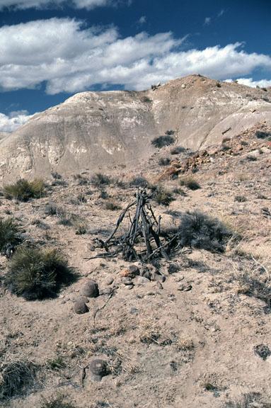 An old sweat lodge is erected among desert shrubs.