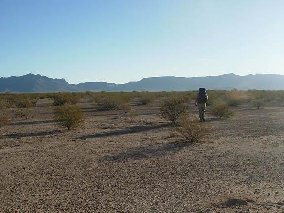 A backpacker treks across the desert, dotted with shrubs.