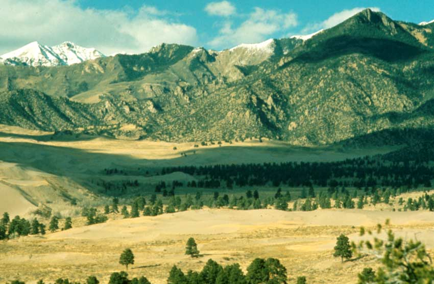 Looking out across a grassy valley dotted with large pine trees, rocky snowcapped mountains rising on the other side.