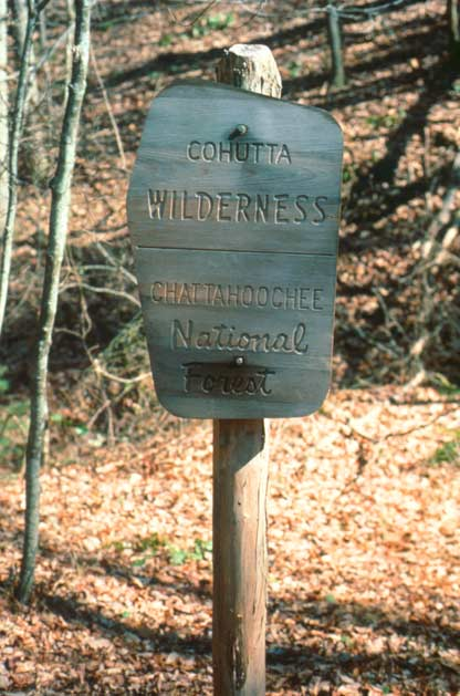 A small weathered sign stands in the forest, in front of a background of brown leaves.