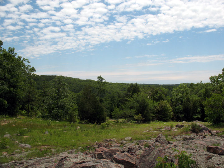 Looking out over a rocky meadow, with dense forest stretching off into the distance under a bright blue sky.
