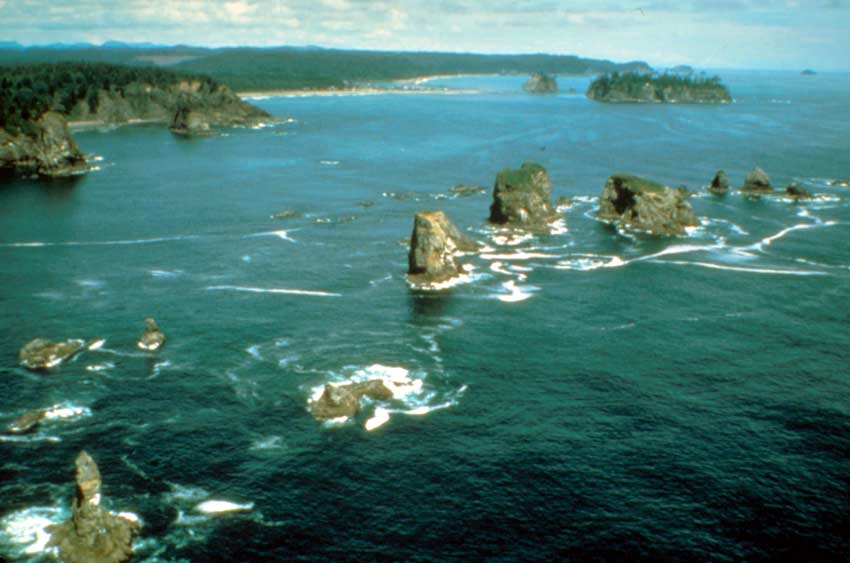 An aerial view looking down the coast over dozens of small rock pinnacles, jutting through the shallow green water.