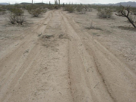 Vehicle tracks in the desert, indicating the coarse relationship between illegal immigrants, drug smugglers, and the Border Patrol.