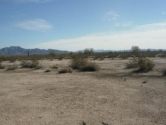 Westward view of the Sierra Pinta mountains.