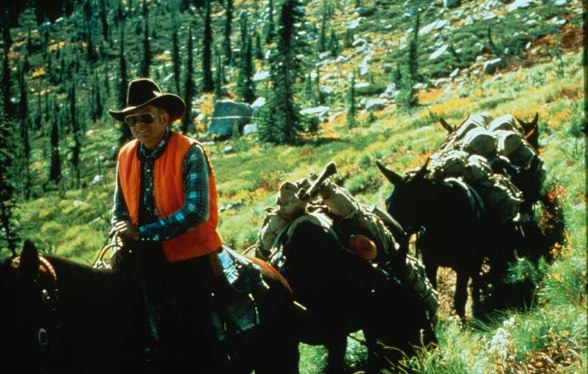A man on horseback in an orange vest and cowboy hat, leading a string of pack mules along an alpine path.