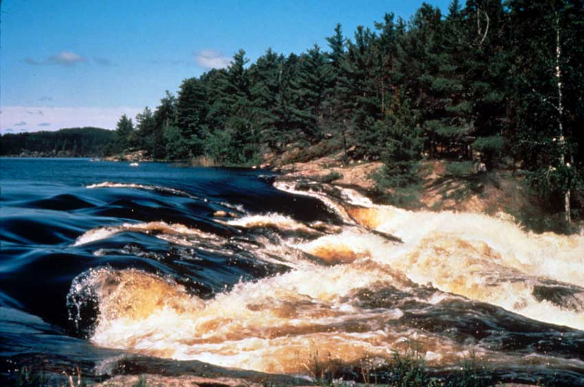 A large outlet, with white rapids breaking the smooth surface of the lake along the forest edge.