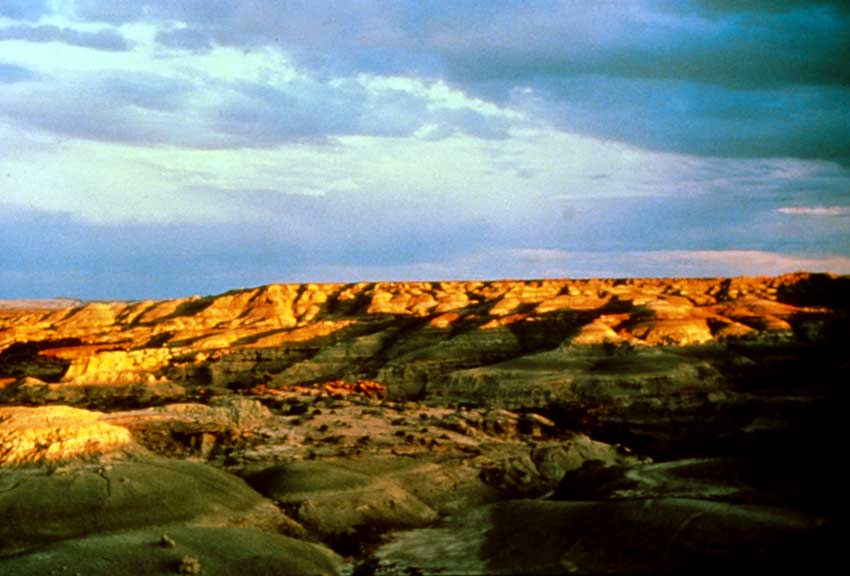 Looking out over a rugged desert canyon landscape, the last golden rays of evening fading into black shadows below.