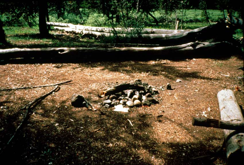 A forest campsite, several logs gathered around an old fire ring in the center.