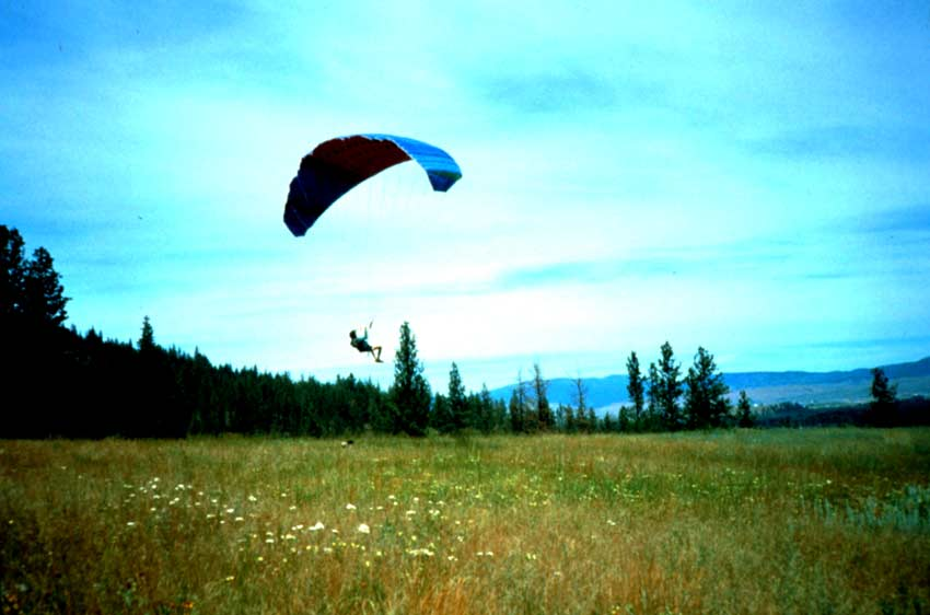 A person suspended from a blue parachute, landing in the middle of a large open meadow.