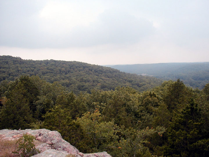 Viewing out over dense green forest stretching into the distance, under an overcast white sky.