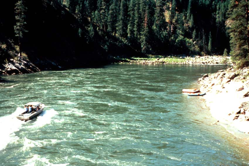 A jetboat plowing up a large turquoise river, tall forest trees on either side.