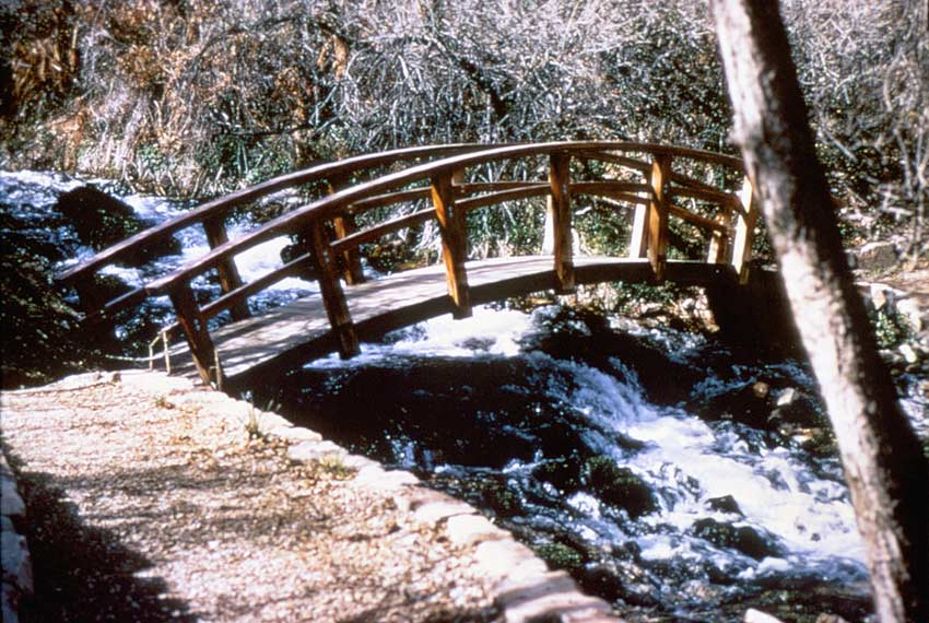 A small arched footbridge, set across a rushing stream through the forest.