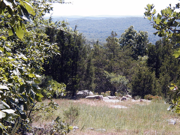 Looking through trees down over a rocky meadow, dense green forest stretching off into the distance beyond.
