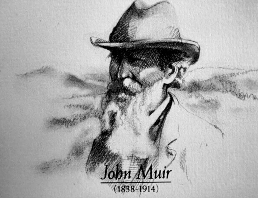 A black and white drawing of John Muir.