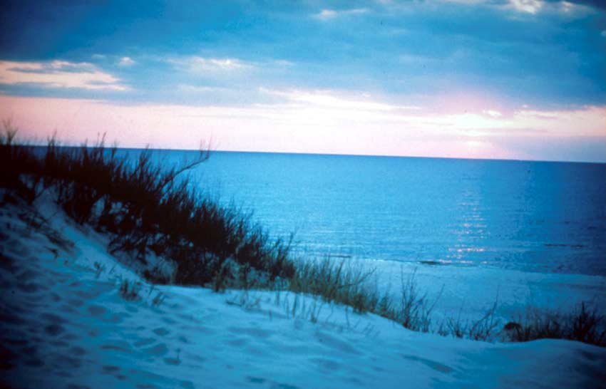 A sandy beach landscaped drenched in blue shadows, the final hues of pink light fading over the water on the distant horizon.