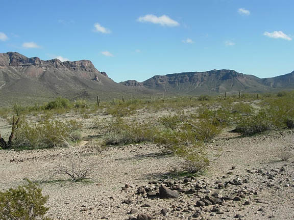 A mountainous area in the distance. The mountains are the Temporal Pass. The flatlands preceeding them are dotted with desert shrubs and cacti. The sky is clear and sunny with tiny tufts of clouds.