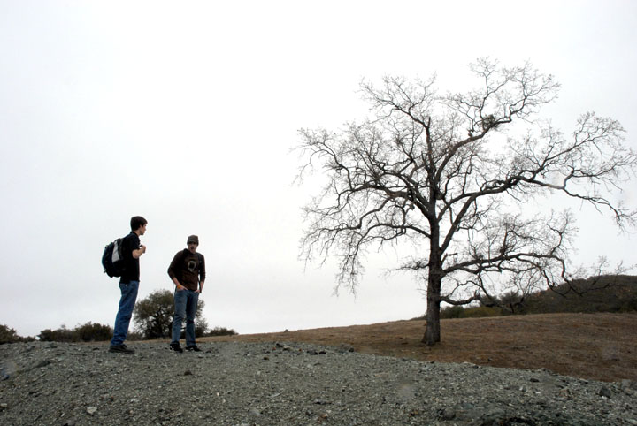 Two hikers standing on an open trail next to the lone skeleton of a tree.
