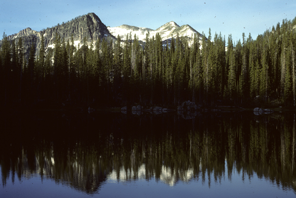 The still water of Horseshoe Lake reflects the dense image of pine trees along the waters edge in Wallowa Whitman National Forest located in Oregon.