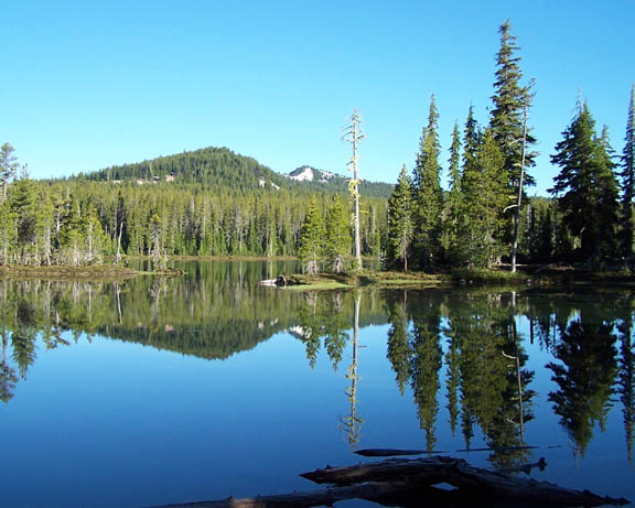 A photo a Puck Lake. The lake is very still and reflects all the surrounding landscape, which consists of tall pine trees, hills, and a clear blue sky.