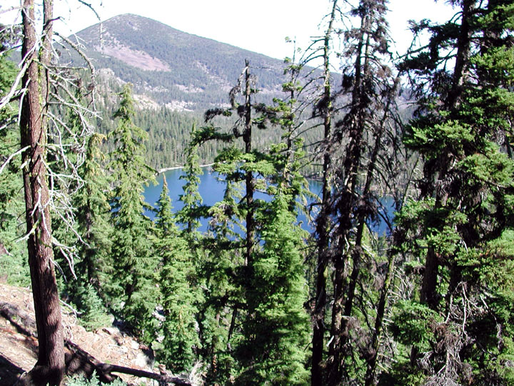 Viewing down through the trees to a lake below, with a low tree-covered mountain rising beyond.