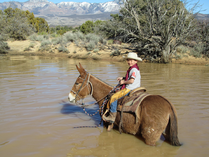 A boy sits atop a mule wading through muddy, belly high water.