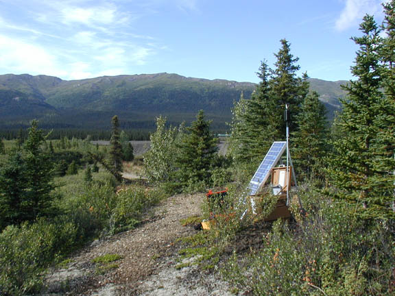 Sound monitoring equipment set up among pine trees and other trees near the Taklanika River.