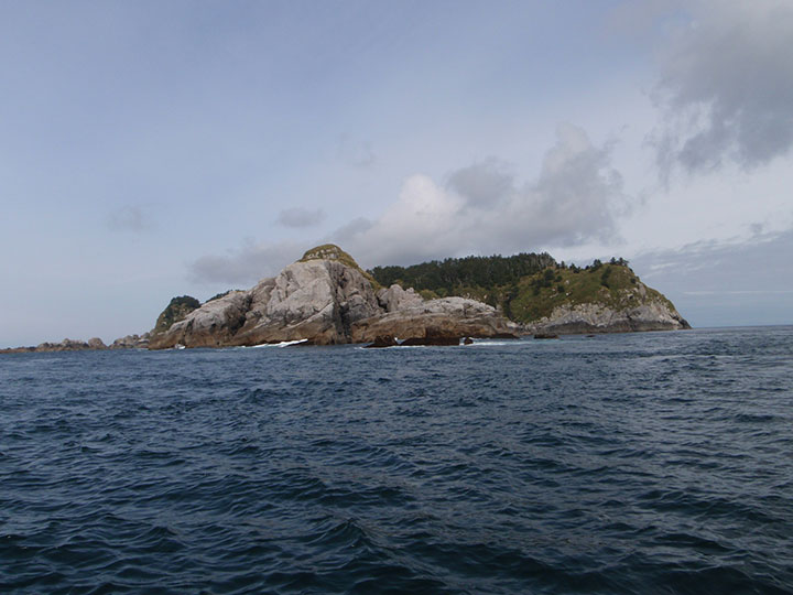 Forrester Island as seen from the ocean.
