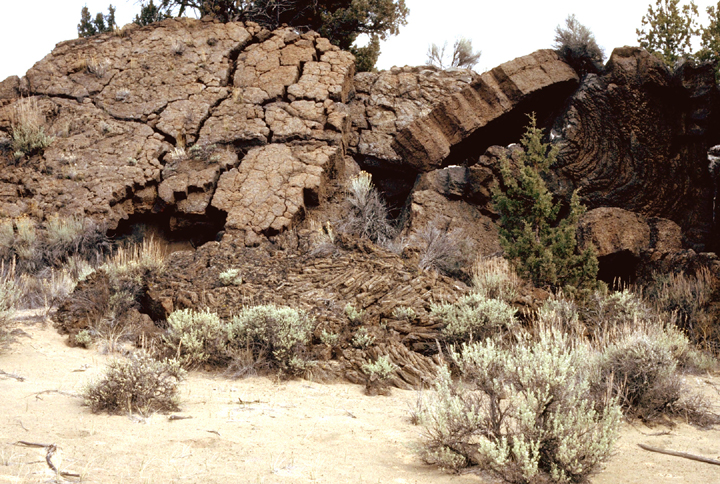 Large flat scaly rocks protrude from a sandy desert with scattered sagebrush at its base.