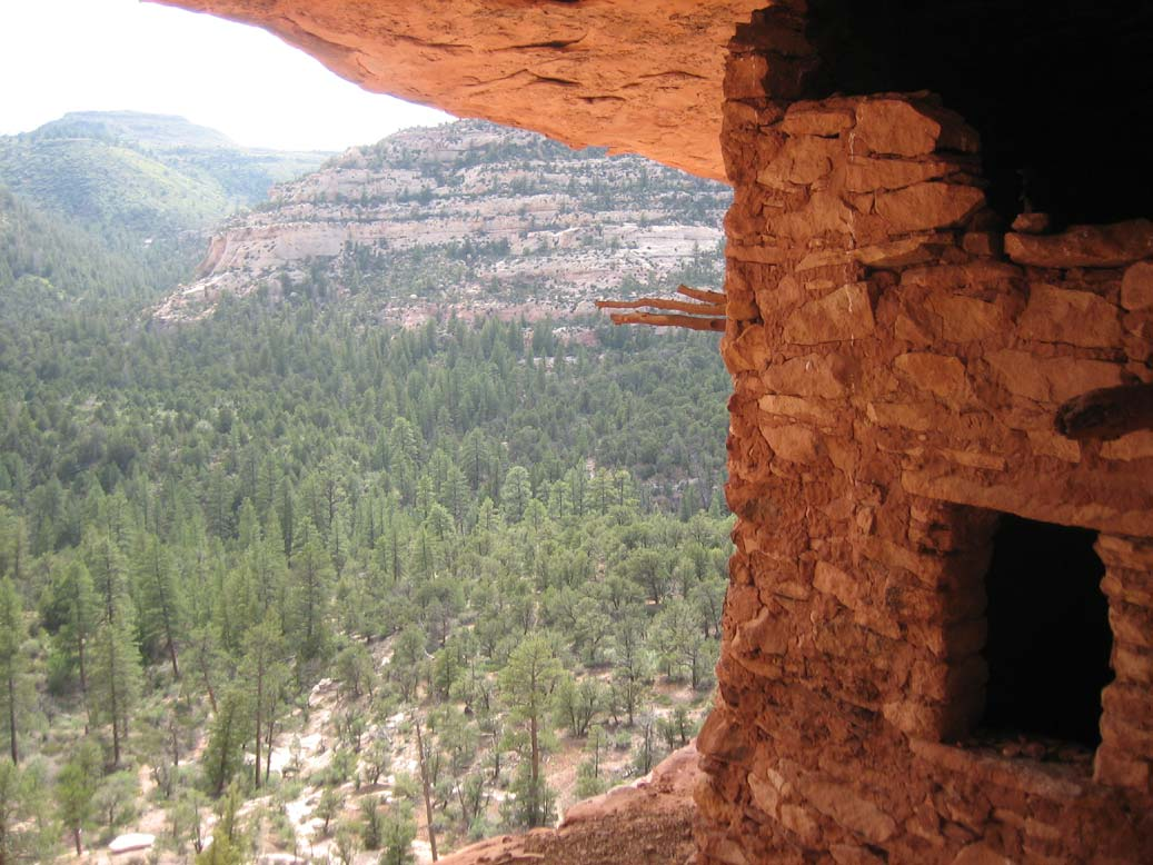 A close-up of a window in an ancient stone structure, looking down over open forest in the valley below.
