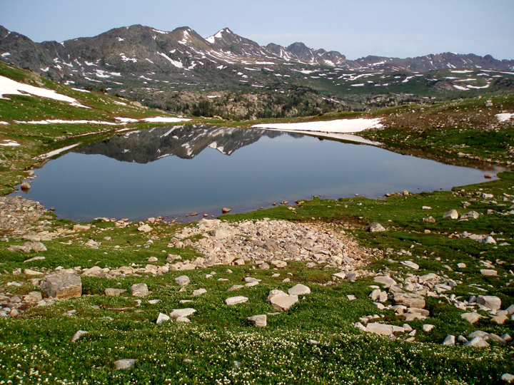 A blue-grey lake surrounded by lush green hillsides scattered with rocks reflects snow-patched mountains and the clear sky above.