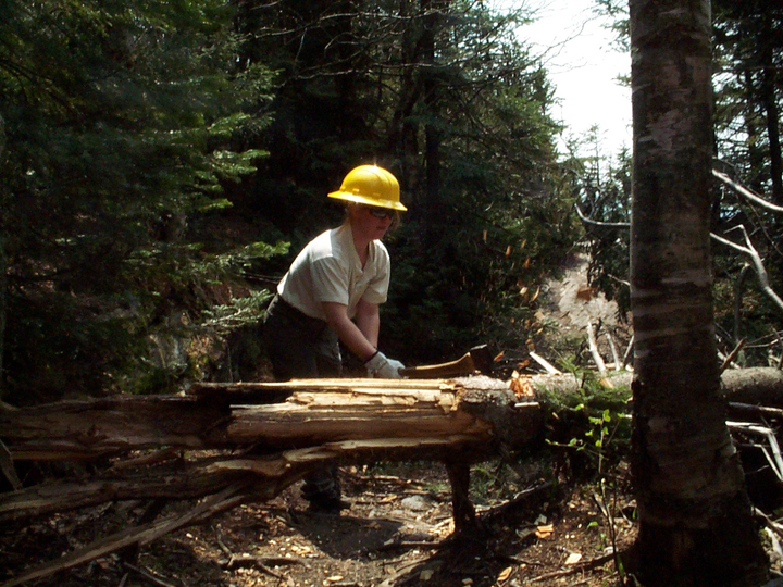 A female wilderness ranger uses an axe to cut a fallen tree in the Breadloaf Wilderness.
