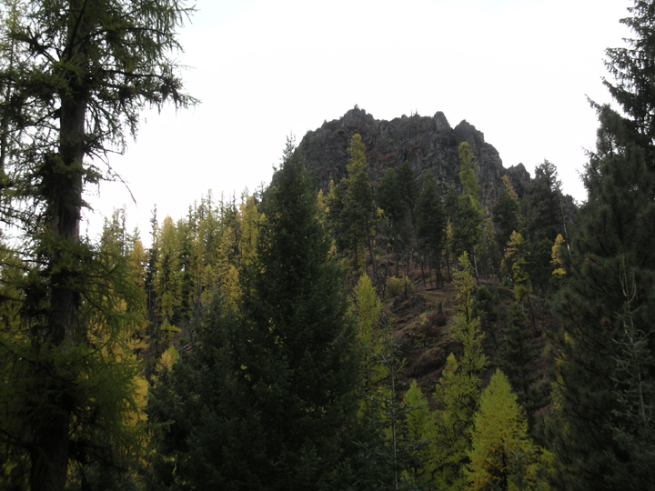Trees grow up a steep slope leading up to a large butte.