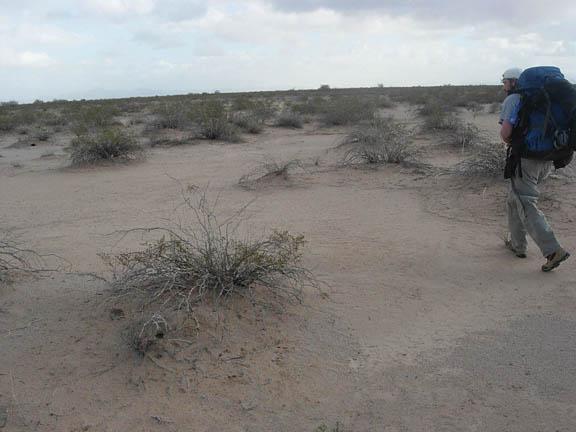 A backpacker in the left-hand corner of the photo marches through the desert, walking amongst the desert shrubs.