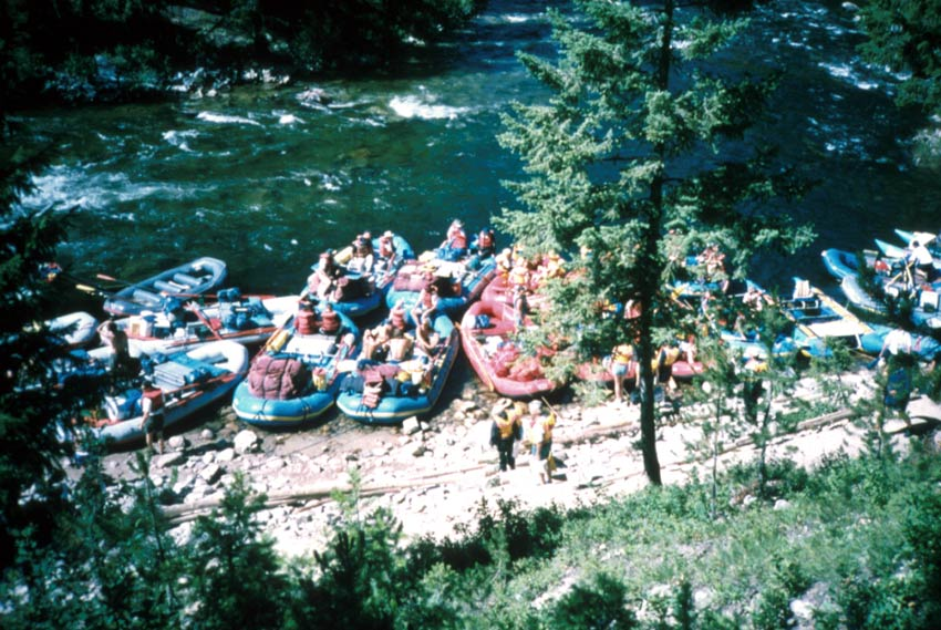 A large group of whitewater rafts, pulled up along the shore of a clear blue river.