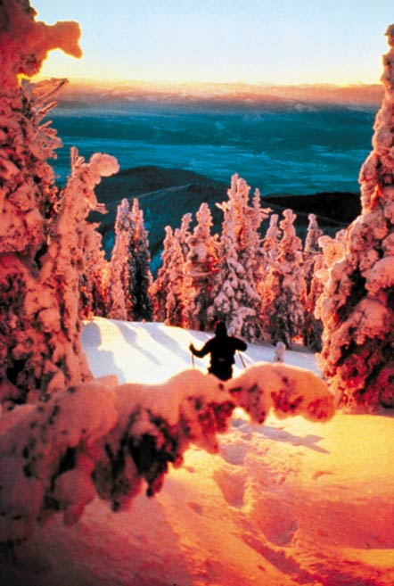A lone snowshoer descending through trees draped in fresh powder, and drenched in the rich orange light of sunset.