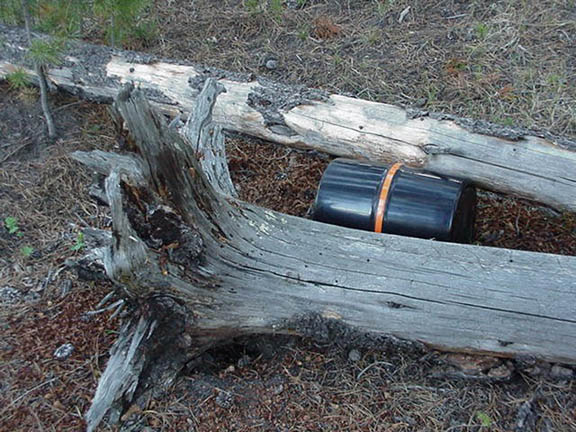 A bear canister stuffed between two fallen trees, protects hikers food against bears.