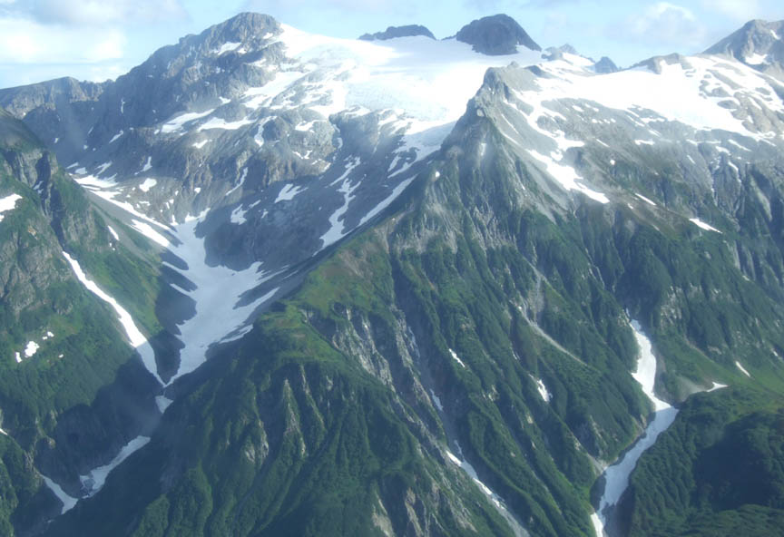 An aerial view looking into the side of a massive peak, the fluted slopes filled with gray rock, dense green brush, and white snow, leading up to an icefield above.