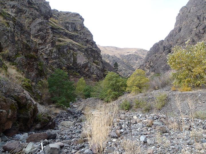 A small streambed flows through a canyon.