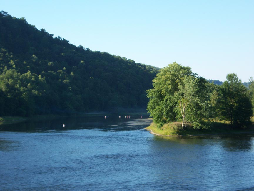 A calm, blue river is forked by an island dotted with lush, green trees and grass. Along the shore, the landscape, blanketed in trees, rises and casts a shadow on the left side of the river.